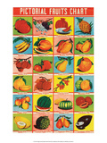Indian Educational Chart - Pictorial Fruits Posters