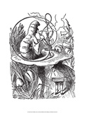 Alice in Wonderland Prints by John Tenniel