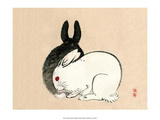 Black and White Rabbits Art