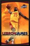 Cleveland Cavaliers - Lebron James 14 Prints