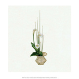 Ikebana, Arrangement of Calla Lilies Poster by Josiah Conder