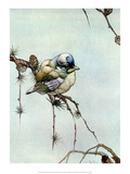 Bird Illustration, The Blue Tit Prints by Edward Detmold
