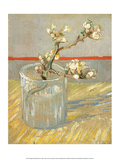 Sprig of Flowering Almond in a Glass, 1888 Lámina por Vincent van Gogh