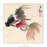 Chinese Fishes Art