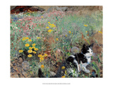 Cat on a Flower Bed, 1887 Art by Bruno Liljefors