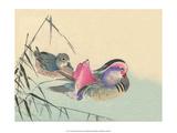 Japanese Ducks Print by Haruna Kinzan