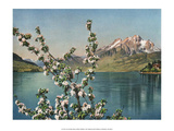 Lake des Quatre-Cantons, Switzerland, 1949 Print