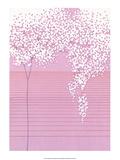 Pink Cherry Blossom Posters by Takashi Sakai