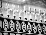 London Railings I Giclee Print by Joseph Eta