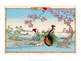 Chicken and Rooster under Cherry Blossom Poster by Rinsai Utsushi
