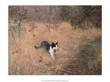 Cat Hunting, 1883 Prints by Bruno Liljefors