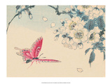 Japanese Pink Butterfly Posters by Haruna Kinzan