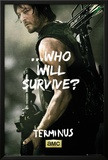 Walking Dead - Daryl Survive Posters