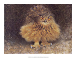 Owl, 1905 Posters by Bruno Liljefors