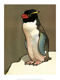 Bird Illustration, The Penguin, 1899 Prints by Edward Detmold