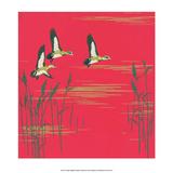 Mid-Century Modern Wallpaper, Three Flying Ducks Prints