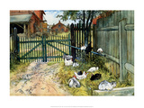 Chickens in the Yard, 1904 Posters par Carl Larsson