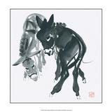 Donkeys Prints