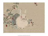 Japanese Rabbit Prints by Haruna Kinzan