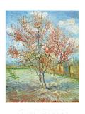 Pink Peach Tree, Poster par Pierre-Auguste Renoir
