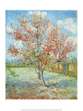 Pink Peach Tree, Poster by Pierre-Auguste Renoir