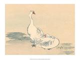 Japanese Geese Poster by Haruna Kinzan