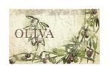 Italian Olives Giclee Print