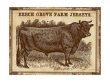 Jersey Bull Giclee Print