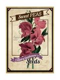Vintage Sweet Peas Packet Giclee Print