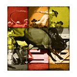 Rodeo in Tiles Lámina giclée