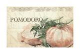 Italian Tomatoes Giclee Print
