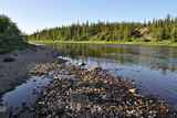 Taiga River Paga, Virgin Komi Forests. Photographic Print by  sergunt