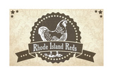 Rhode Island Reds 4 Giclee Print
