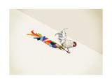 Gallo Stampa giclée di Jason Ratliff