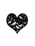 A Group of Birds Is Called a Flock Giclee Print by Francesca Iannaccone