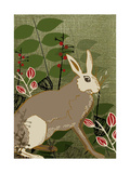 Hare Giclee Print by  Rocket 68