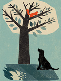 Dog and Squirrel Giclee Print by  Rocket 68