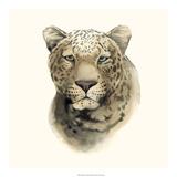 Safari Cat I Giclee Print by Grace Popp