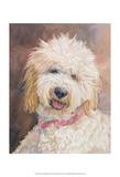 Honey Goldendoodle Posters by Edie Fagan