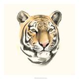 Safari Cat III Giclee Print by Grace Popp