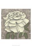Silver Rose II Plakat af Chariklia Zarris