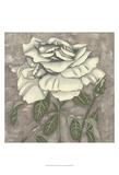 Silver Rose I Plakater af Chariklia Zarris