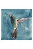 Watercolor Hummingbird II Print by Grace Popp