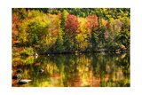 Colorful Foliage Reflection in a Tranquil Lake Photographic Print by George Oze