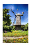 Dutch Windmill With Blooming Tulips Photographic Print by George Oze