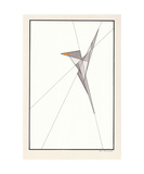 Bird Photographic Print by Ernst Kruijff