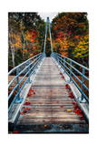 Bridge To The Nature, New Hampshire Photographic Print by George Oze