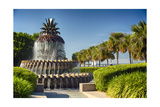 Charleston Pineapple Fountain Photographic Print by George Oze