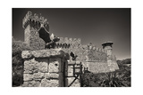 Gargoyles On A Castle Wall Photographic Print by George Oze