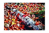 Color Splash Of Nature Photographic Print by George Oze